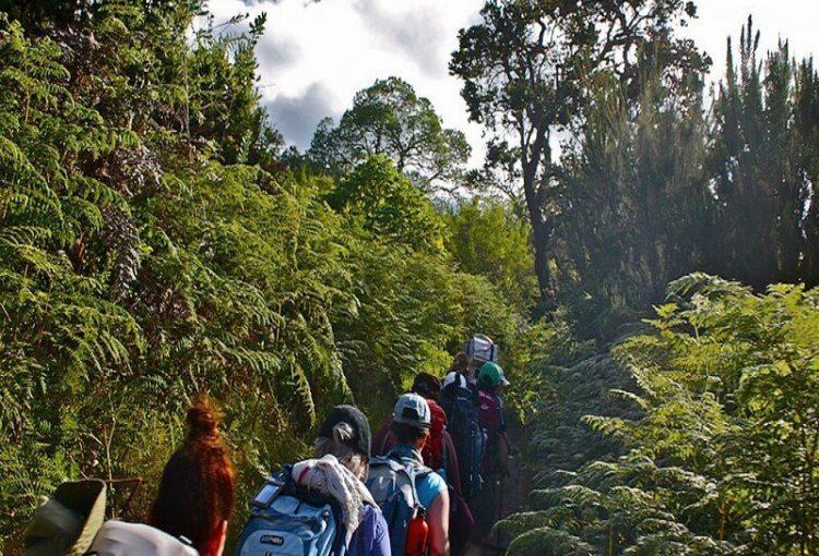 Kilimanjaro-05